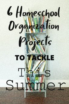 6 Homeschool Organization Projects.jpg